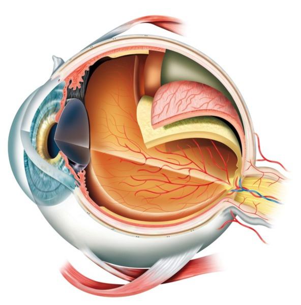 Augenarzt Dr. Arno Sailer - Laserbehandlung der Hornhaut